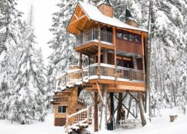 50 Most Wishlisted Airbnbs in Every State Across America