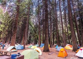 Op Ed: Our Campgrounds Desperately Need an Overhaul