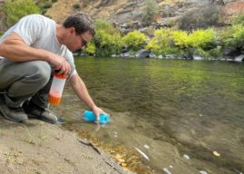 Grayl's GeoPress Purifier Cleans Dirty Water in Seconds